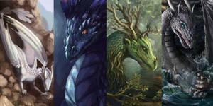 ~Showcase: Dragons