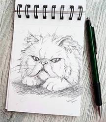 ~Sketchies: Grumpy mood