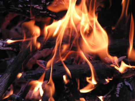 Enticing Warmth