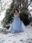 Ice Princess 12 by Sitara-LeotaStock