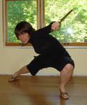 Ninja-ish 2