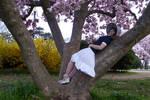 Blossom Days by Sitara-LeotaStock