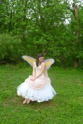 Rose Fairy by Sitara-LeotaStock