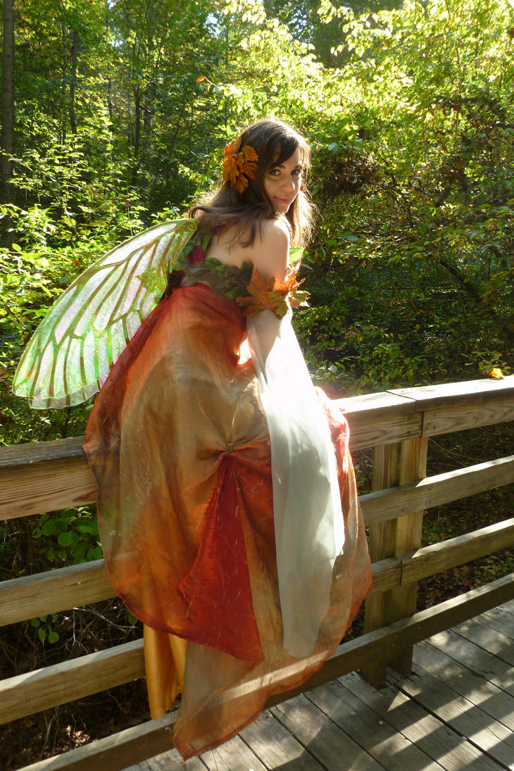 Fall Fairy 1 by Sitara-LeotaStock