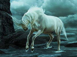 Water horse by LittleBuckaroo-Stock