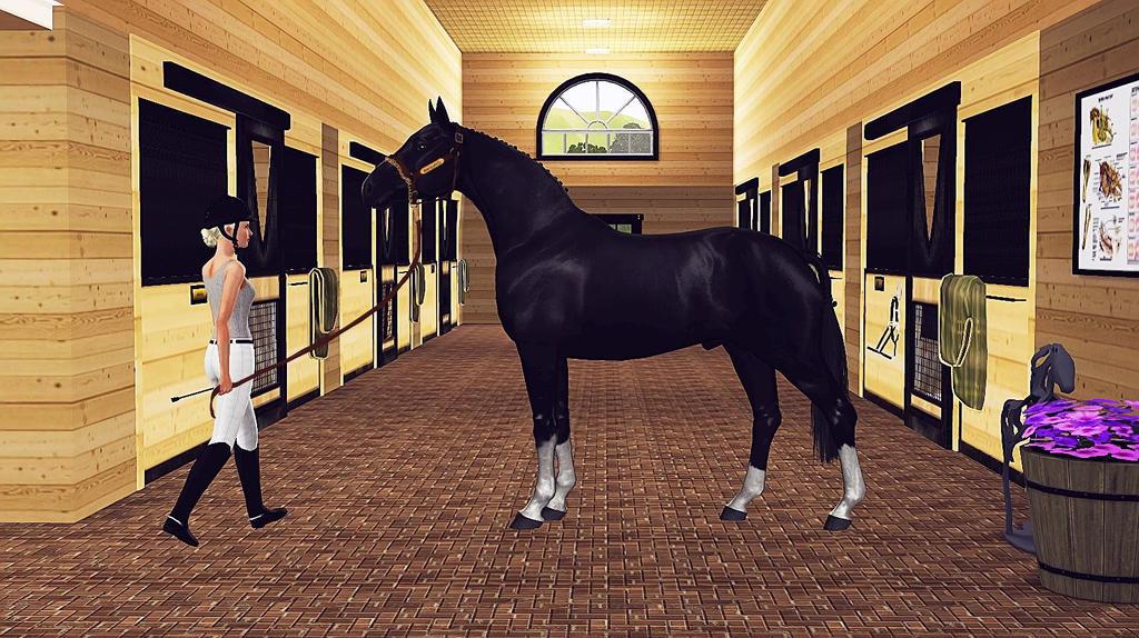 Sims 3 hunter stallion
