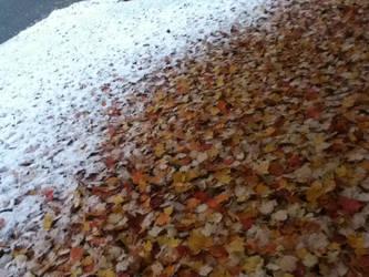 When Fall Meets winter by darkgentlemen