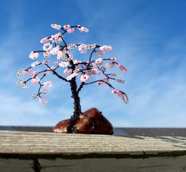 Cherry Blossom Tree on a Sunny Fall Day