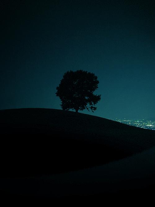 Hillside by denkyo