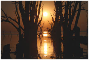 Drowned Trees Sunset by michref