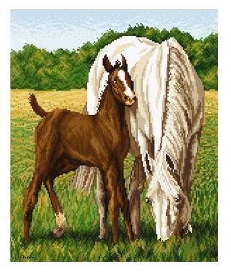 Horses by PixelFreya