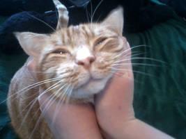 The Cutest of Them All by KittySib