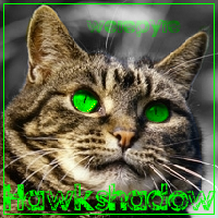 Hawkshadow Avatar by nive2000
