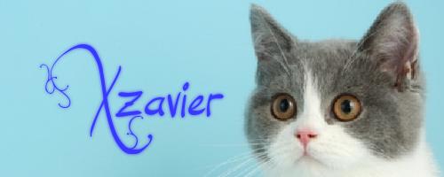 Xzavier by nive2000