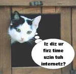 Your First Time The Internet