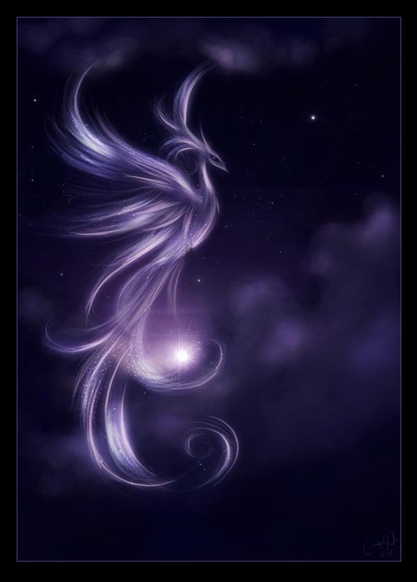 .Nebula. by Xenonia