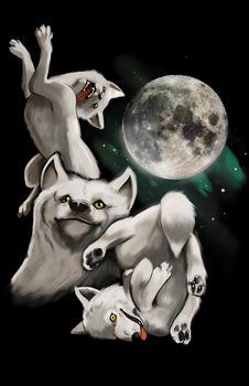 Three Moon Moon: T-Shirt