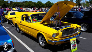 1965 Ford Fastback Mustang