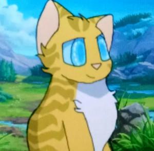 DreamerTheAnonymous's Profile Picture