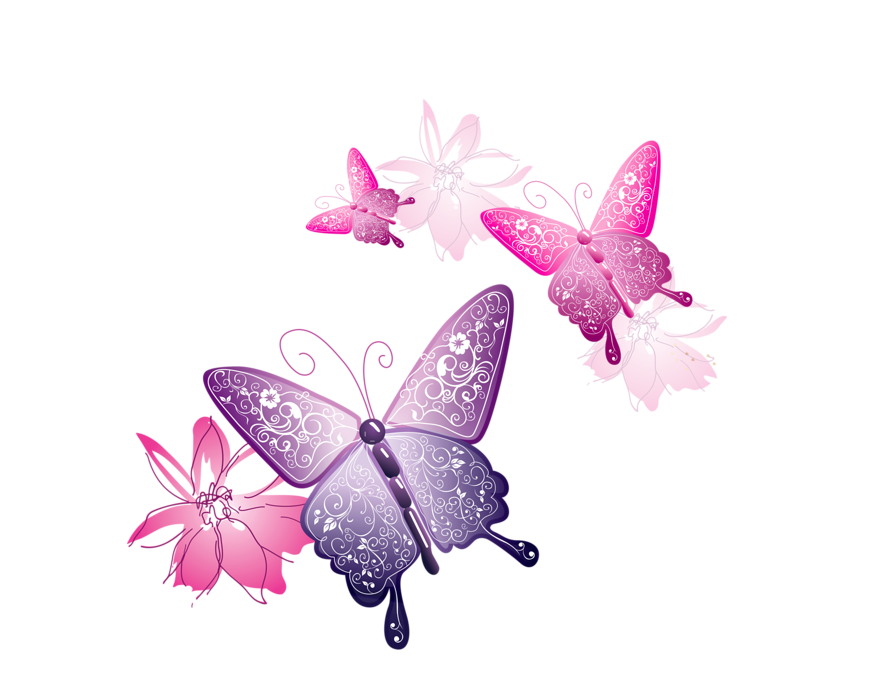 png mariposas by mileycyrusjuli on DeviantArt