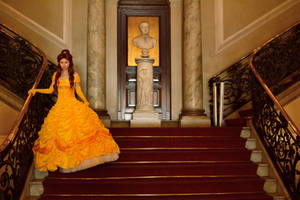 Beauty and the Beast: Belle [2] by BabiM