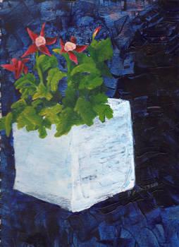 Columbine: Floral Still life series 1