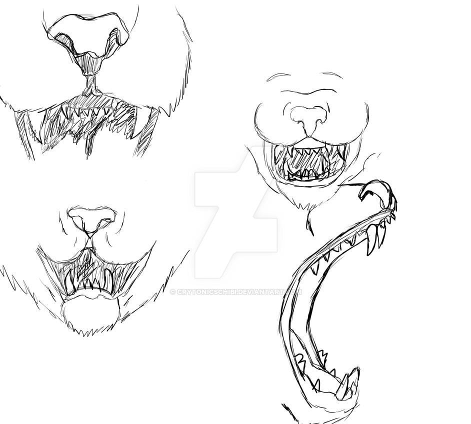 Big Cat Mouth Anatomy by CrytonicsChibi on DeviantArt