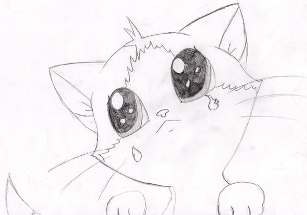 Sad Kitten By PikachuPika On DeviantArt