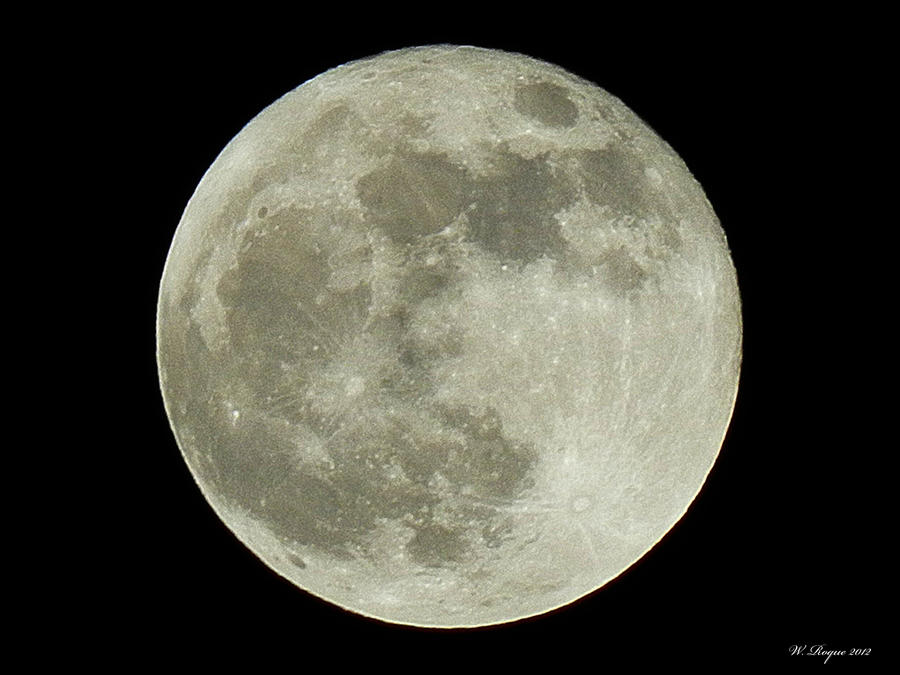 fullmoon nov 2012 by wroquephotography