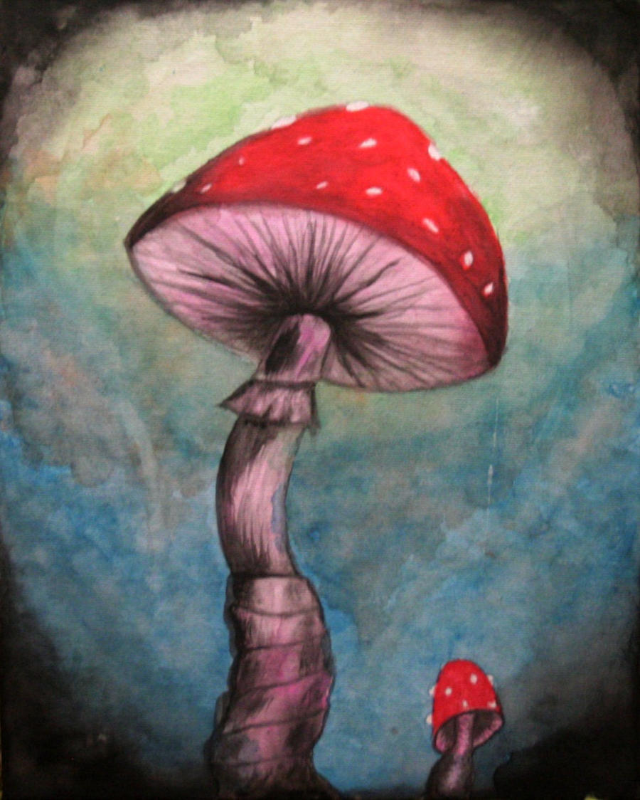 Wonderland's Mushrooms by Sam12345678900