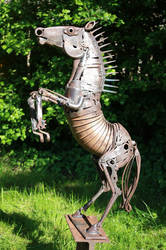 hhorse by lorenzou