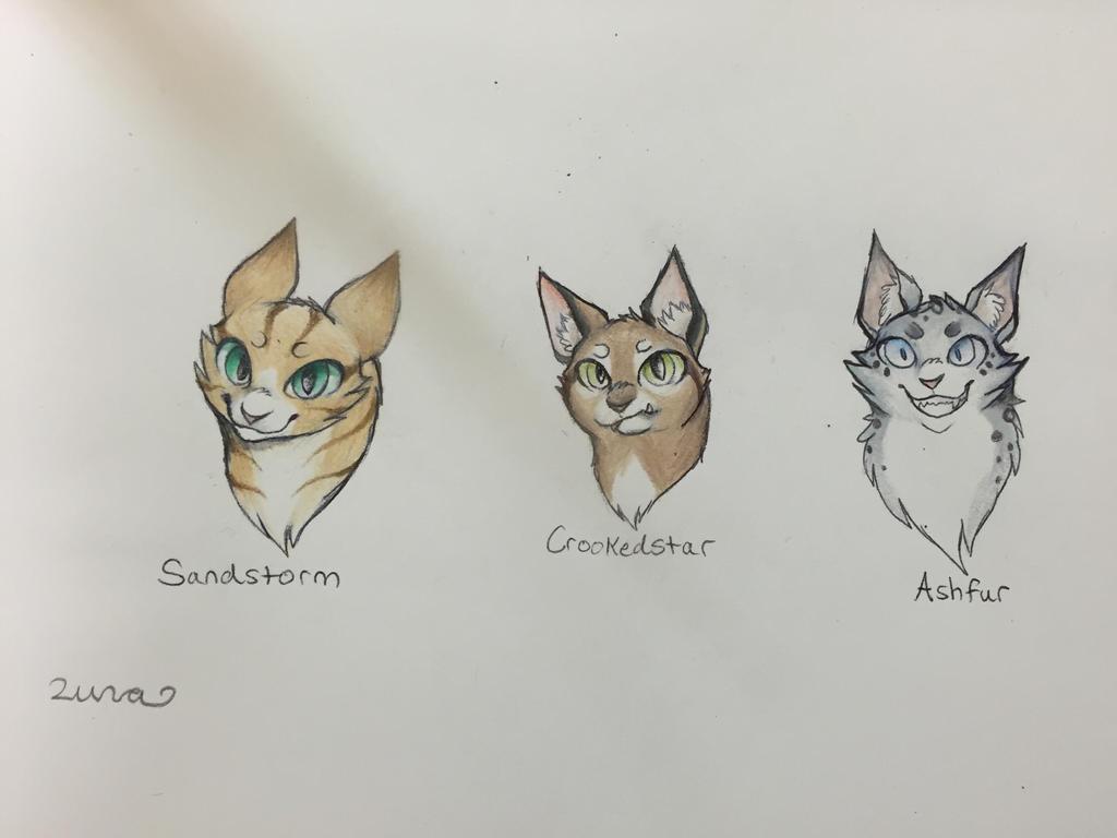 warrior cat sketches by xxlunawarriorxx on deviantart