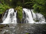 Salmon Falls by mit19237