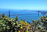 San Francisco Bay by mit19237