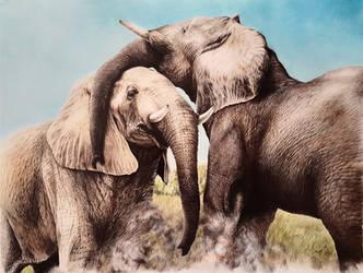 Elephants by daniluc78
