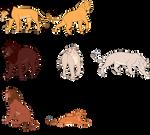 Kamaria's Cubs