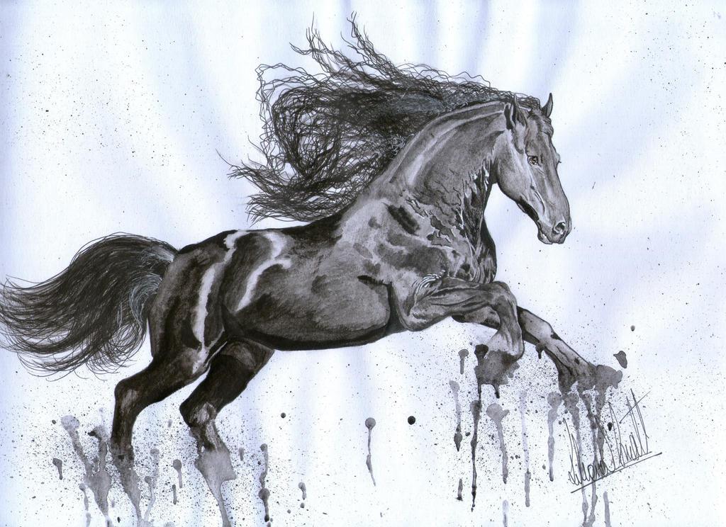 Horse II Paint. by LGhost
