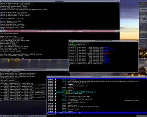 Screenshot 26.08.2008