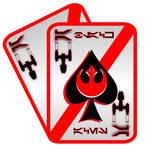 Black Aces Squadron