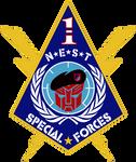 NEST 1st Special Forces Logo