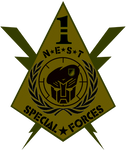 NEST 1st Special Forces Logo 2