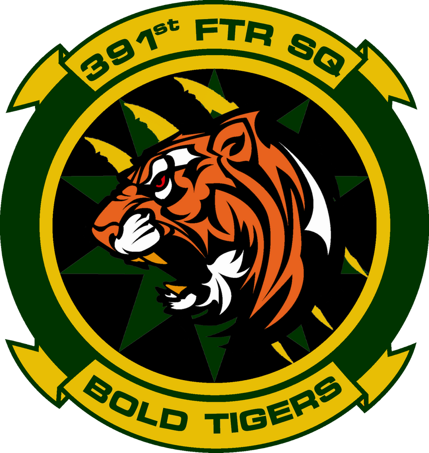 391st Fighter Squadron Bold Tigers Commission by viperaviator