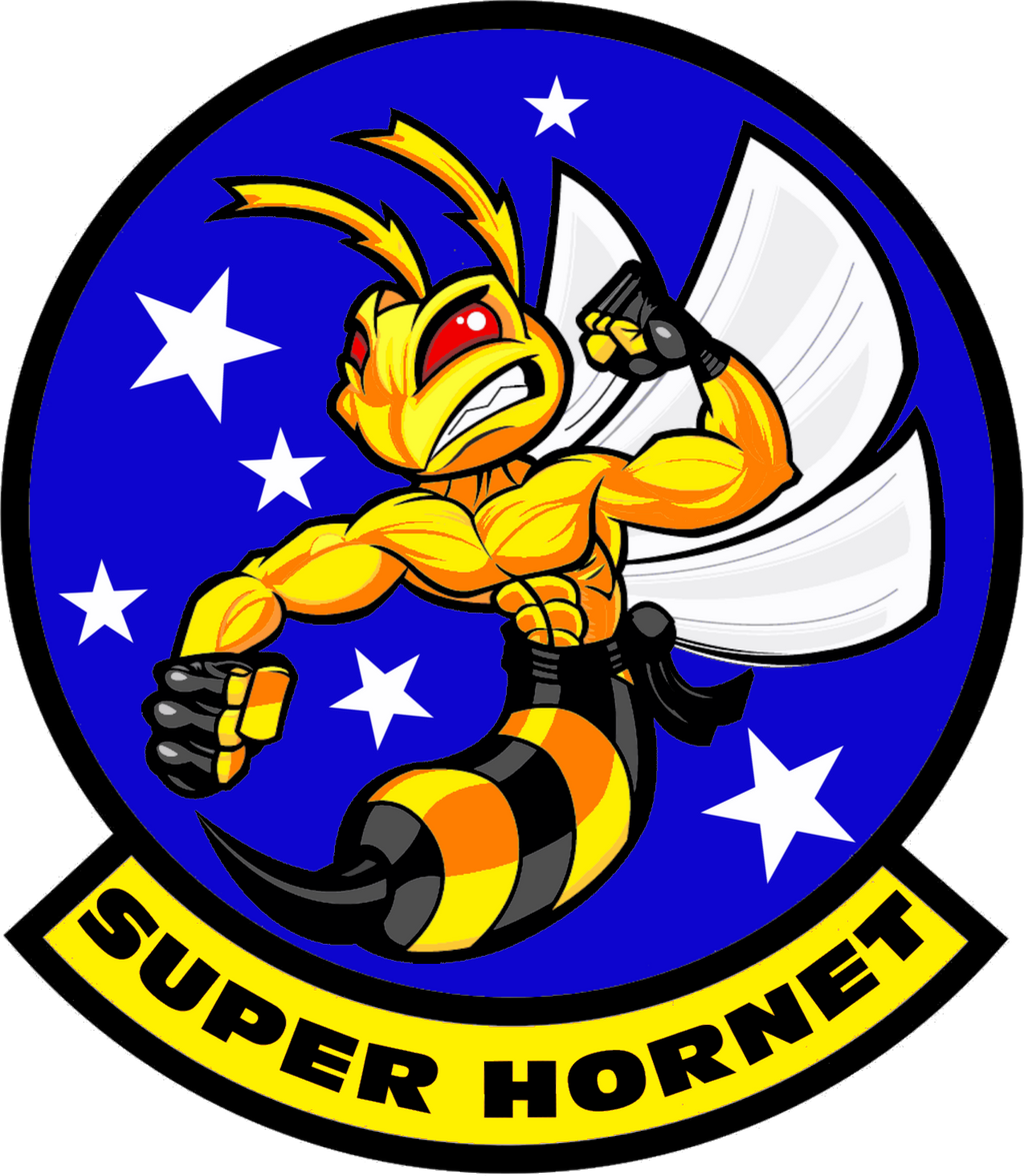 F/A-18E,F Super Hornet Flight Insignia by viperaviator