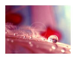Little Hearts by FaMz