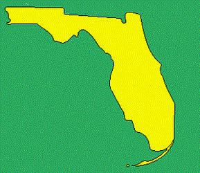 Florida outline by blahblahblaheat