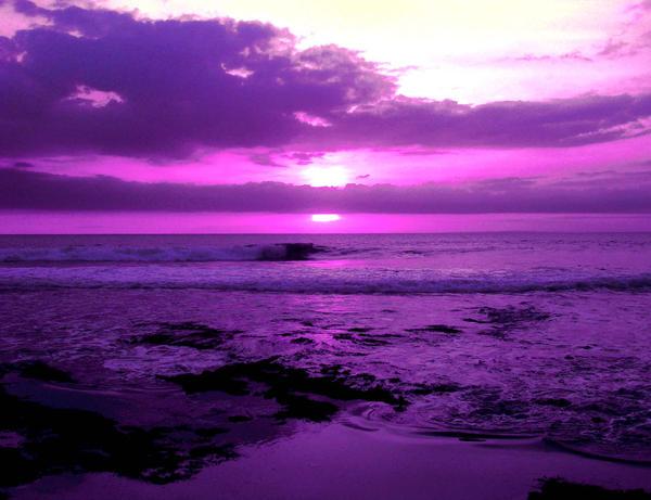 http://fc02.deviantart.com/fs28/i/2008/047/0/0/In_Purple_by_Andry122.jpg
