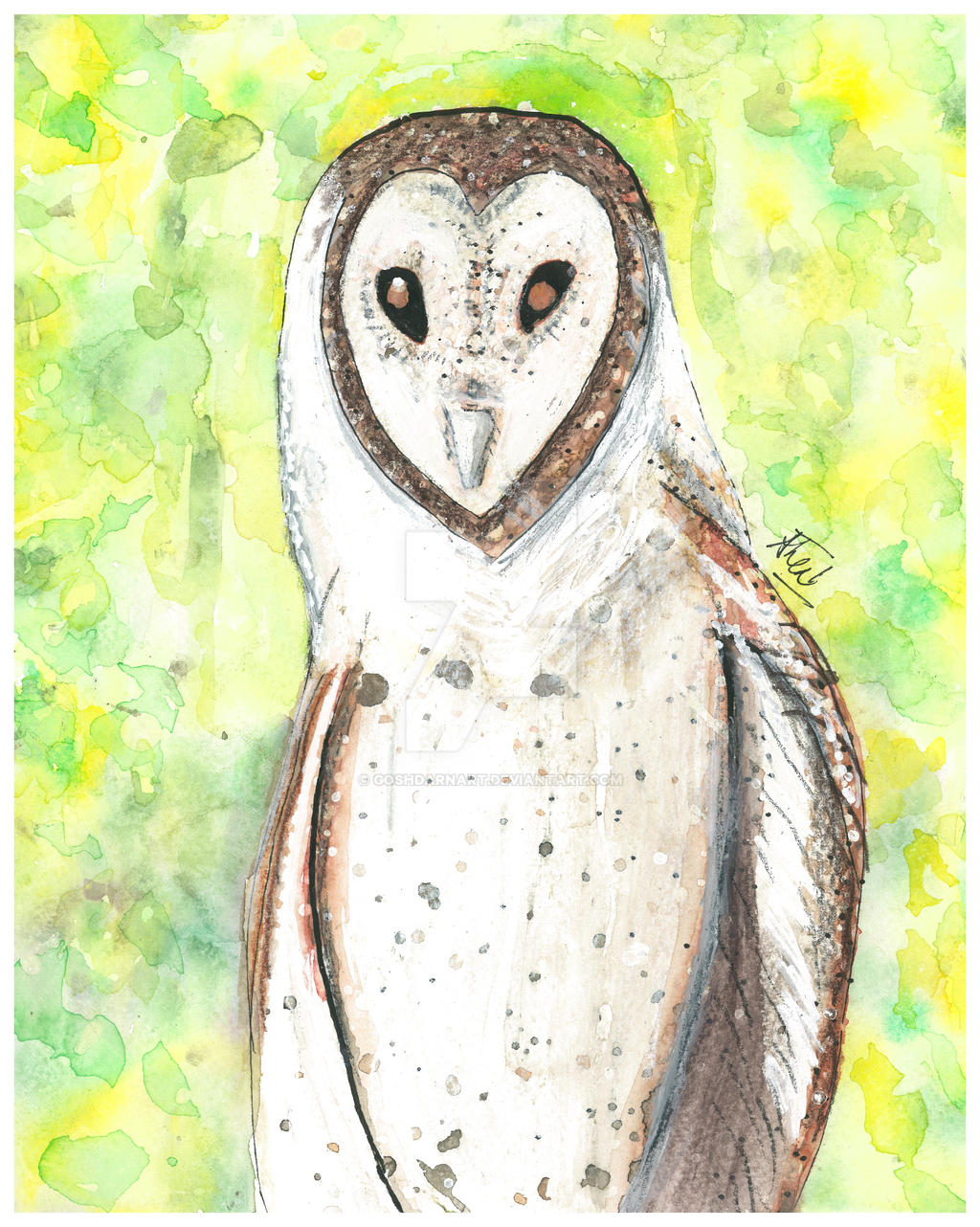 Molly's Owl by goshdarnart