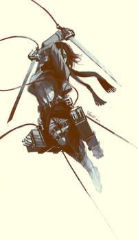 Mikasa In Flight