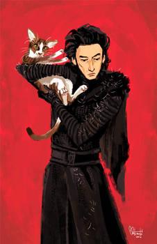 Kylo Ren and Adam Driver Cat