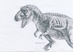 Tyrannosaurus rex by iguanaking10